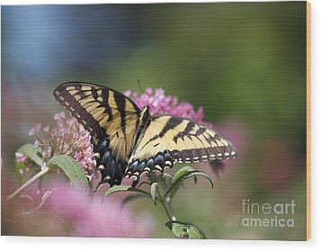 Pretty In Pink All Profits Go To Hospice Of The Calumet Area Wood Print