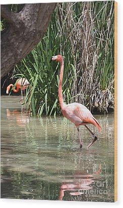 Pretty In Pink Wood Print by John Telfer