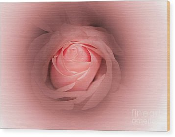Pretty In Pink Rose Abstract Wood Print