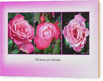 Pretty In Pink Roses Wood Print by Jo Collins