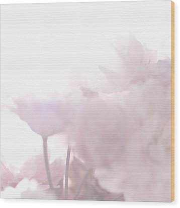 Wood Print featuring the photograph Pretty In Pink - The Whisper by Lisa Parrish