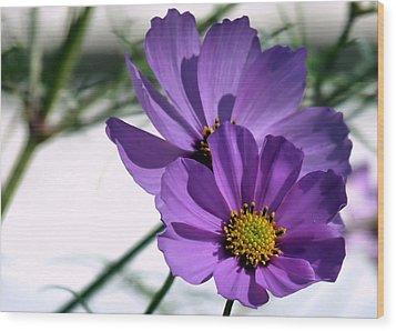 Pretty In Purple Wood Print by Janice Drew