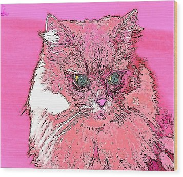 Pretty Kitty In Pink Wood Print by Kathy Budd