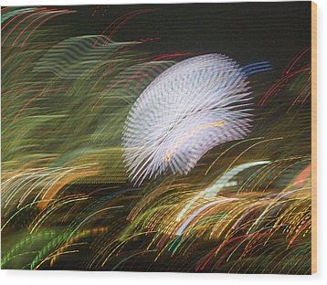Wood Print featuring the photograph Pretty Little Cosmo - 1 by Larry Knipfing