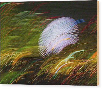 Wood Print featuring the photograph Pretty Little Cosmo - 3 by Larry Knipfing