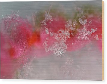 Wood Print featuring the photograph Pretty Little Snowflakes by Lauren Radke