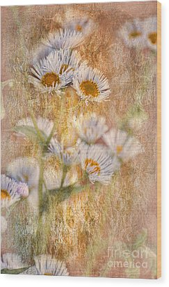 Pretty Little Weeds IIi Wood Print by Debbie Portwood