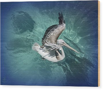 Wood Print featuring the photograph Pretty Pelican by Pennie  McCracken