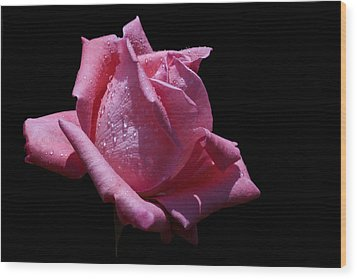 Wood Print featuring the photograph Pretty Pink by Doug Norkum