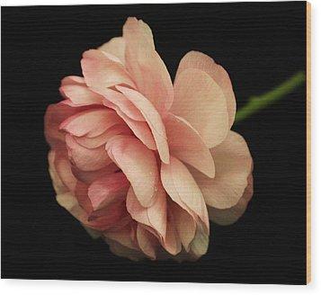 Pretty Pink Flower Wood Print by Carol Welsh