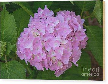 Pretty Pink Hydrangea Wood Print by Susan Wiedmann
