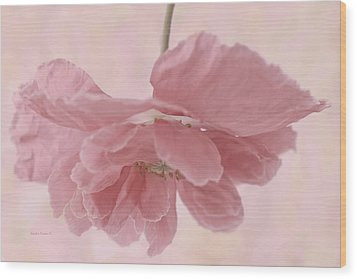 Pretty Pink Poppy Macro Wood Print by Sandra Foster