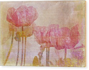 Pretty Poppy Garden Wood Print