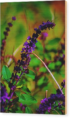 Pretty Purple Plant Wood Print