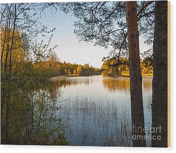 Pretty Spring Evening At The Lake Wood Print