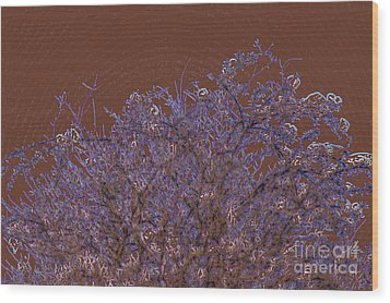 Pretty Tree Wood Print by Carol Lynch