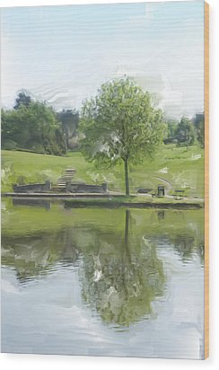 Pretty Tree In Park Picture.  Wood Print by Christopher Rowlands