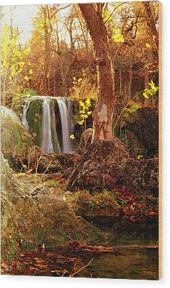 Price Falls 2 Of 5 Wood Print by Jason Politte