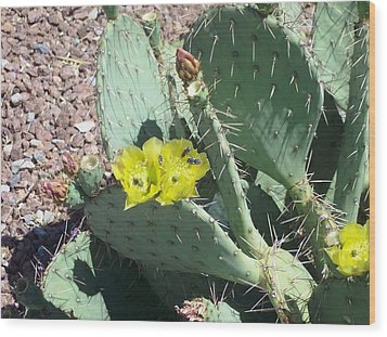 Prickly Pear Bees Wood Print