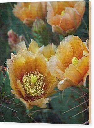 Prickly Pear Cactus Wood Print by Mary Lee Dereske