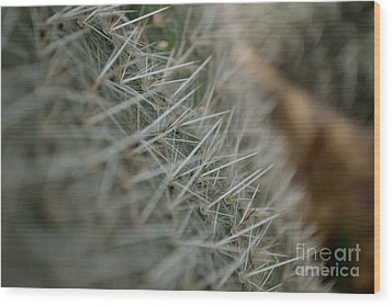 Wood Print featuring the photograph Prickly Pear by Scott Lyons