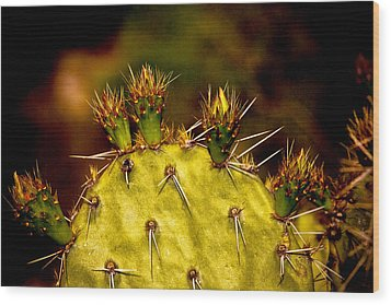 Prickly Pear Spring Wood Print