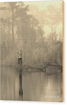 Wood Print featuring the photograph Pride by John Glass