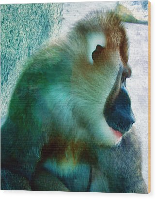 Wood Print featuring the photograph Primate 1 by Dawn Eshelman