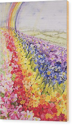 Primrose Rainbow Wood Print by Joan Thewsey