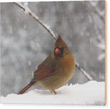 Princess In The Snow Wood Print