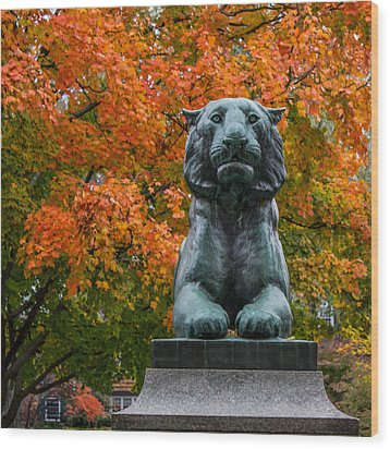Princeton Panther Wood Print