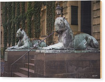 Princeton Tigers Wood Print