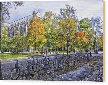Princeton University Campus Wood Print