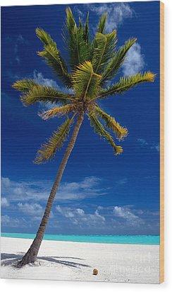 Pristine Tropical Beach  Wood Print
