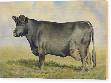 Prize Dexter Cow Wood Print by Anthony Forster