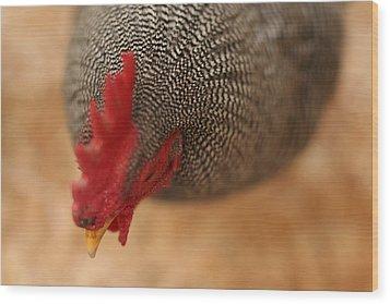 Prize Winning Rooster Wood Print by Heidi Hermes