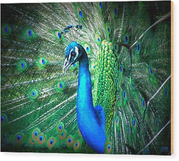 Wood Print featuring the photograph Profile Of A Peacock  by Heidi Manly
