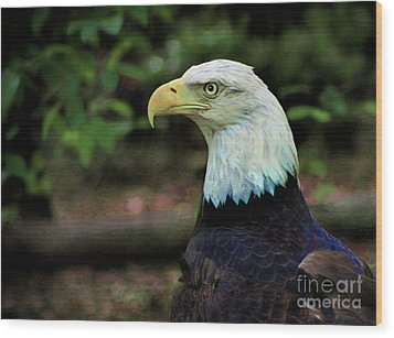 Profile Of America Wood Print