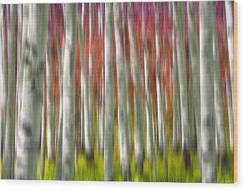 Progression Of Autumn Wood Print by Adam Romanowicz