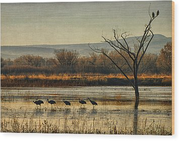 Wood Print featuring the photograph Promenade Of The Cranes by Priscilla Burgers