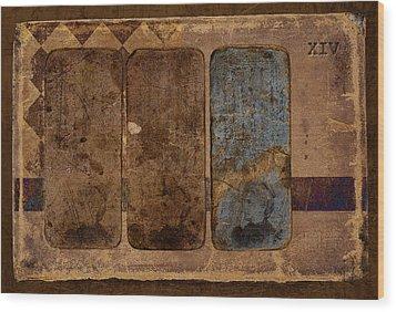 Proof Xiv Wood Print by Carol Leigh