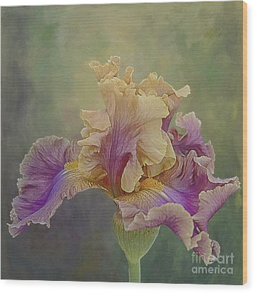 Wood Print featuring the photograph Proud Iris by Vicki DeVico