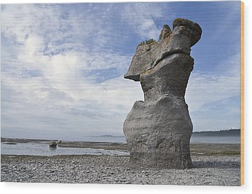 Wood Print featuring the photograph Proud Rock by Arkady Kunysz