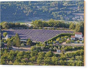 Provence Farmland Wood Print by Bob Phillips
