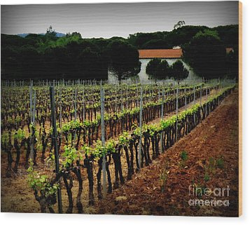 Provence Vineyard Wood Print by Lainie Wrightson