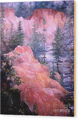 Providence Canyon - 3 Wood Print by Gretchen Allen
