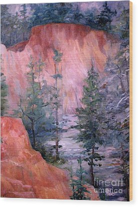 Providence Canyon 4 Wood Print by Gretchen Allen