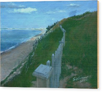 Provincetown And Cape Cod Bay From Lookout Bluff Wood Print