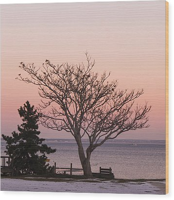 Provincetown December 2012 Wood Print