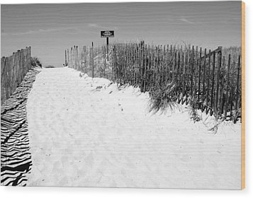 Provincetown Dunes On Cape Cod Wood Print by Caroline Stella